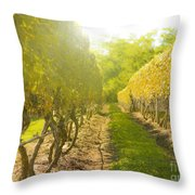 In The Vineyard Throw Pillow by Diane Diederich