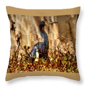 In The Water - Reflection Throw Pillow