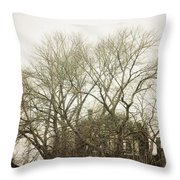 In The Winter Throw Pillow