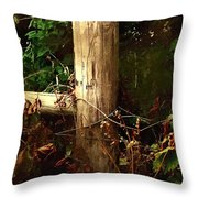 In The Woods By The River Throw Pillow