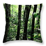 In Touch With Creation Throw Pillow