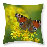 Inachis Io Butterfly On The Yellow Flowers Throw Pillow