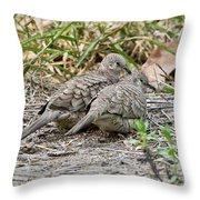 Inca Doves Throw Pillow