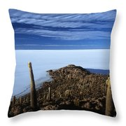 Incahuasi Island And Salar De Uyuni Throw Pillow