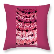 Incan Pattern Throw Pillow