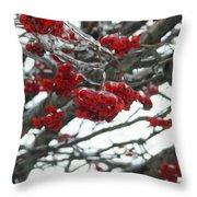 Incased Berries Throw Pillow