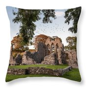 Inch Abbey Throw Pillow
