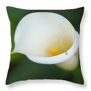 Inching Along Throw Pillow