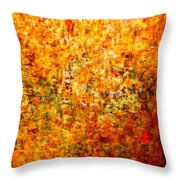 Inchoate Dreams II Throw Pillow