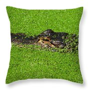 Incognito Throw Pillow