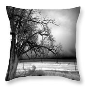 Incoming Storm Throw Pillow by Cat Connor