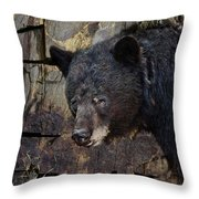 Inconspicuous Bear Throw Pillow