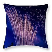 Independence Day 2014 17 Throw Pillow by Alan Marlowe