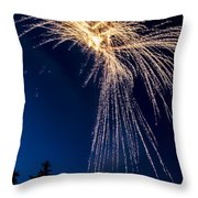 Independence Day 2014 8 Throw Pillow by Alan Marlowe