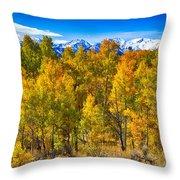 Independence Pass Autumn Colors Throw Pillow