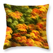 Indian Blanket Psychedelic Throw Pillow