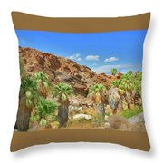 Indian Canyons View In Palm Springs Throw Pillow