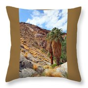 Indian Canyons View With Two Palms Throw Pillow