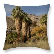 Indian Canyons Throw Pillow