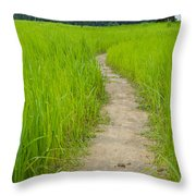 Indian Farm Throw Pillow