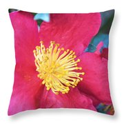 Indian Hawthorne Throw Pillow