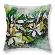 New Orleans Indian Hawthorne Throw Pillow