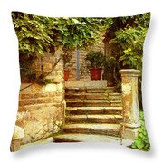 Indian Institute Of Advanced Study Throw Pillow