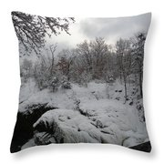 Indian Leap In Winter Throw Pillow