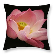 Indian Lotus On Black --- Sacred Light Throw Pillow