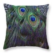 Indian Peacock Throw Pillow