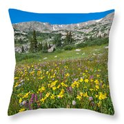 Indian Peaks Wildflower Meadow Throw Pillow