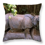Indian Rhinoceros Throw Pillow