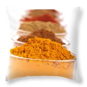 Indian Spices Throw Pillow