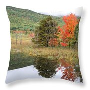Indian Summer Acadia Park Throw Pillow