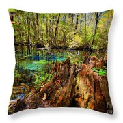 Indian Summer At Buford Spring Throw Pillow