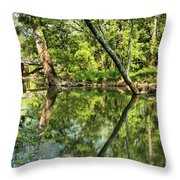 Indiana Reflections Throw Pillow