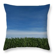 Indiana Summer Throw Pillow