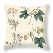 Indigenous Spice Plants Throw Pillow