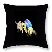 Indigo Bunting - Img 423-008 Throw Pillow