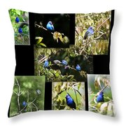 Indigos-collages 6-009 Throw Pillow