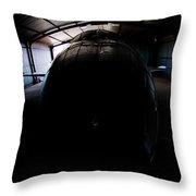 Indoors Throw Pillow