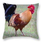 Infamous Kauai Chicken Throw Pillow
