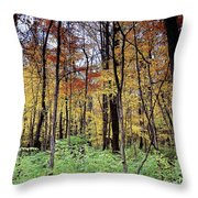 Infared Fall In Indiana Throw Pillow
