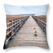 Infinite Boardwalk Run Throw Pillow