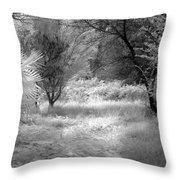 Infrared 3 Throw Pillow