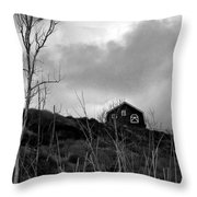 Infrared Barn Throw Pillow