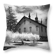 Infrared Barn Throw Pillow