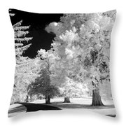 Infrared Delight Throw Pillow