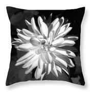 Infrared - Flower 03 Throw Pillow