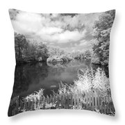 Infrared Mill Pond Throw Pillow